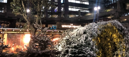 The Winter Forest revient à Broadgate jusqu'à Noël