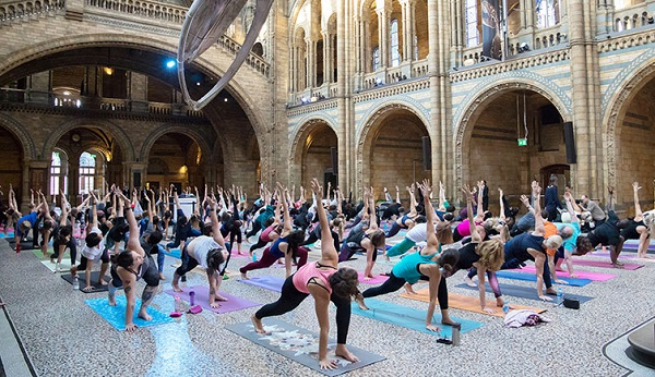 Un cours de Yoga au National History Museum ? C'est possible.