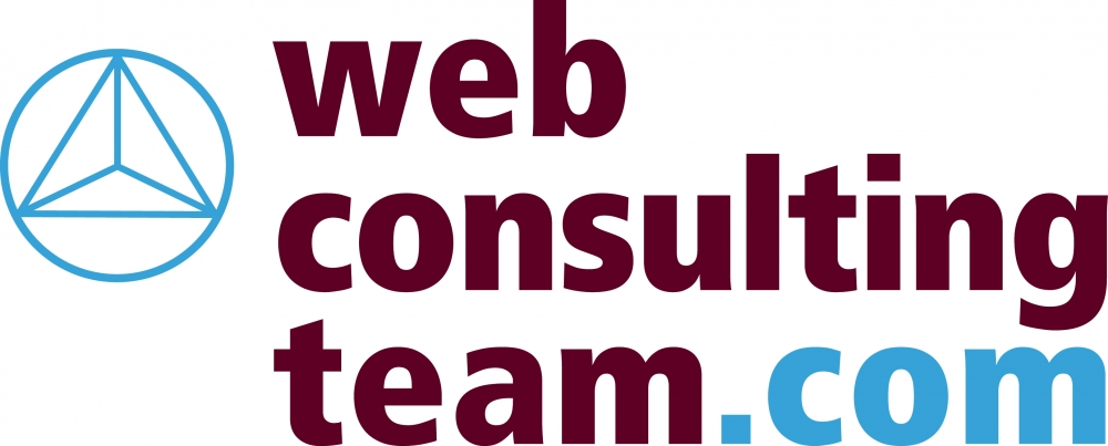 Web Consulting Team illustration